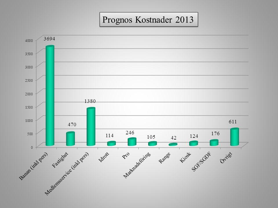 Prognos Kostnader 2013