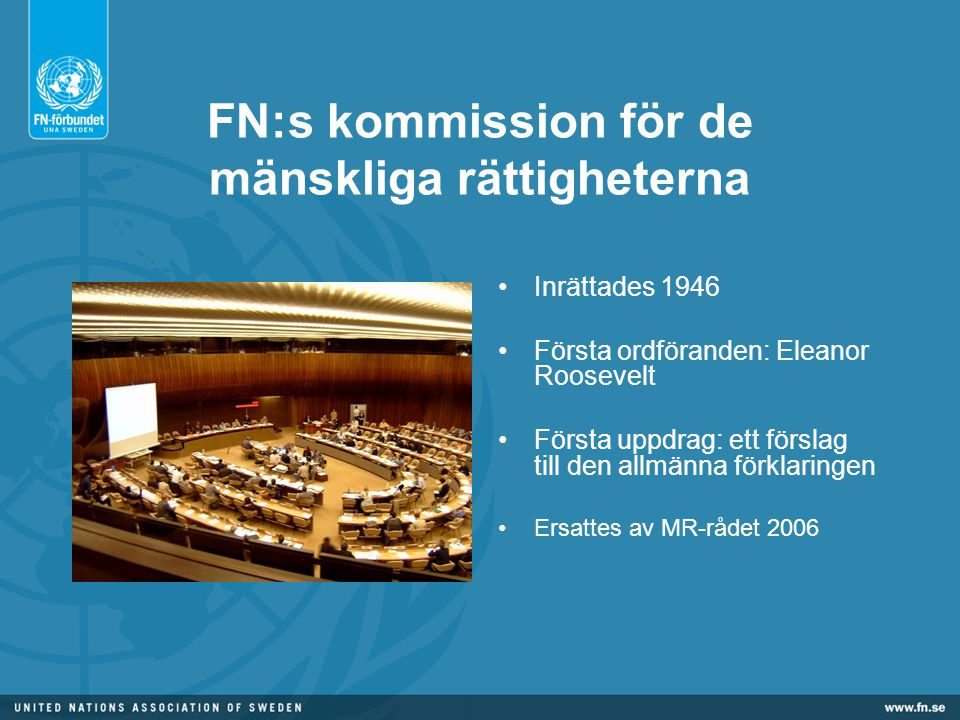 FN:s kommission för de mänskliga rättigheterna