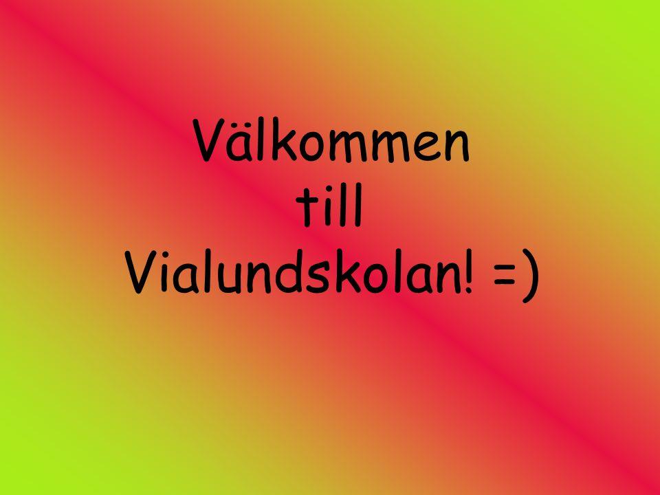 Välkommen till Vialundskolan! =)