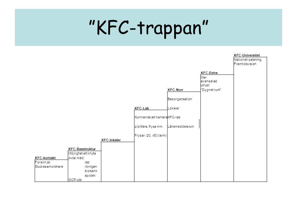 KFC-trappan KFC-Universitet Nationell satsning, Framtidsvision