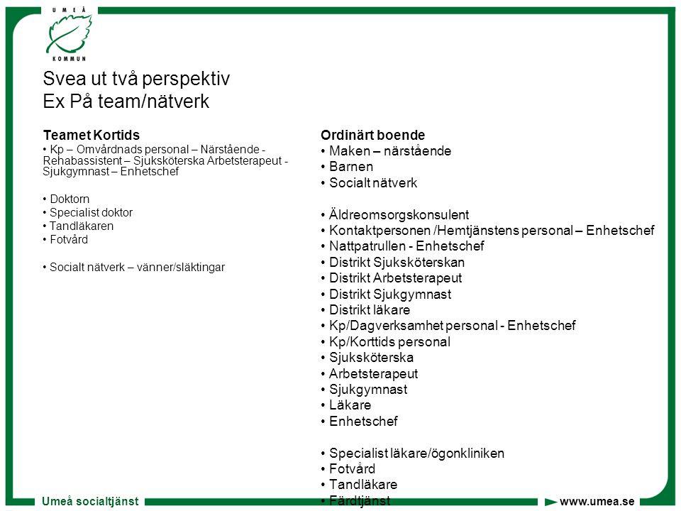 Svea ut två perspektiv Ex På team/nätverk