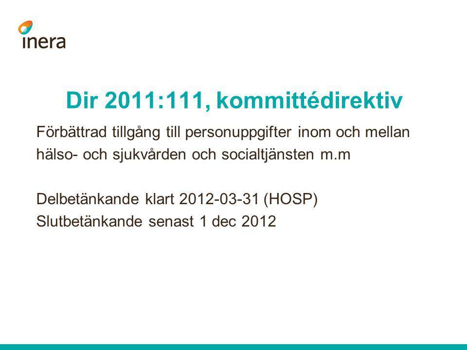 Dir 2011:111, kommittédirektiv