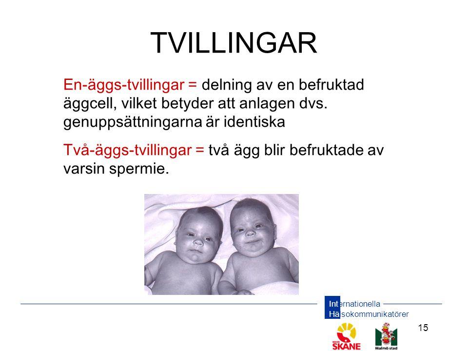 TVILLINGAR En-äggs-tvillingar = delning av en befruktad äggcell, vilket betyder att anlagen dvs. genuppsättningarna är identiska.