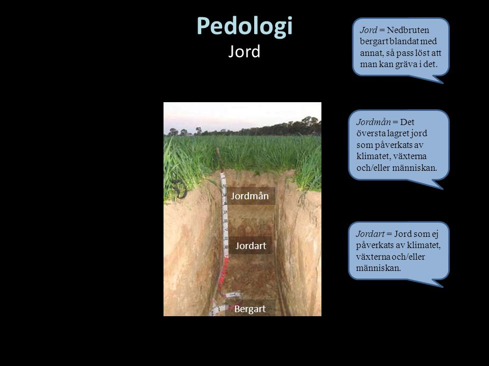 Pedologi Jord Jordmån Jordart Bergart