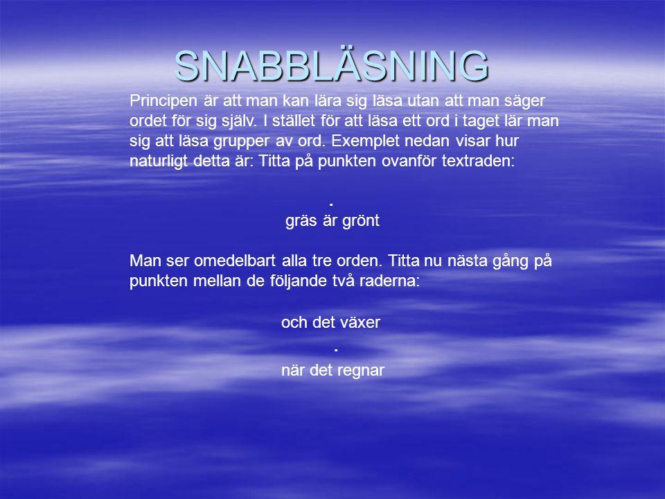 SNABBLÄSNING