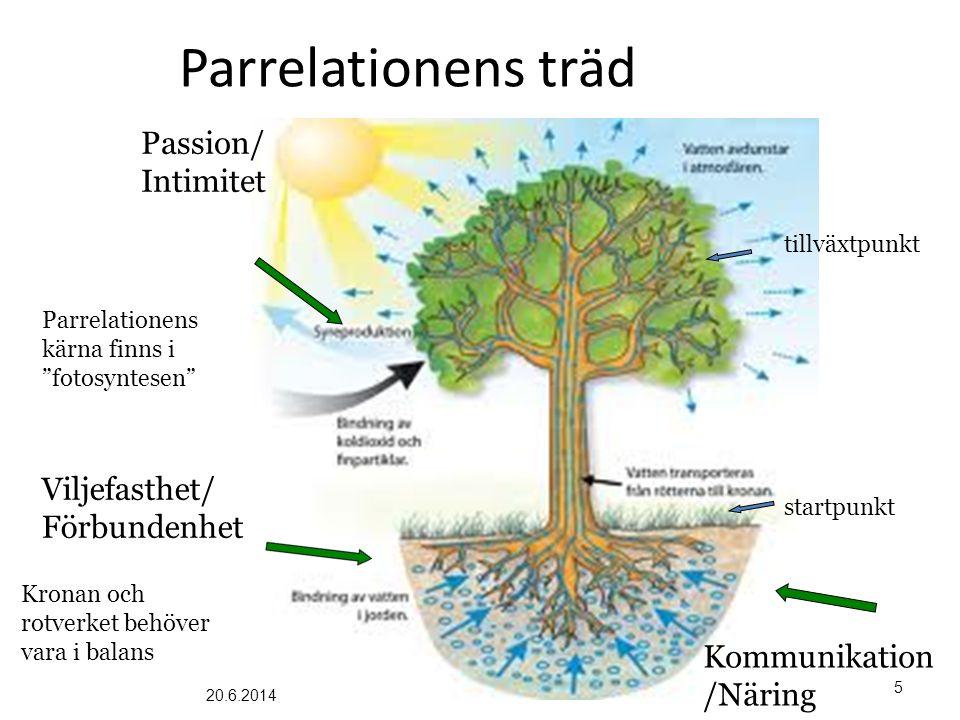 Parrelationens träd Passion/ Intimitet Viljefasthet/ Förbundenhet