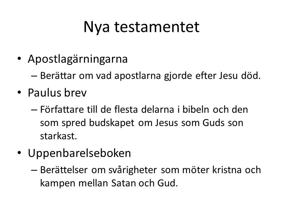 Nya testamentet Apostlagärningarna Paulus brev Uppenbarelseboken