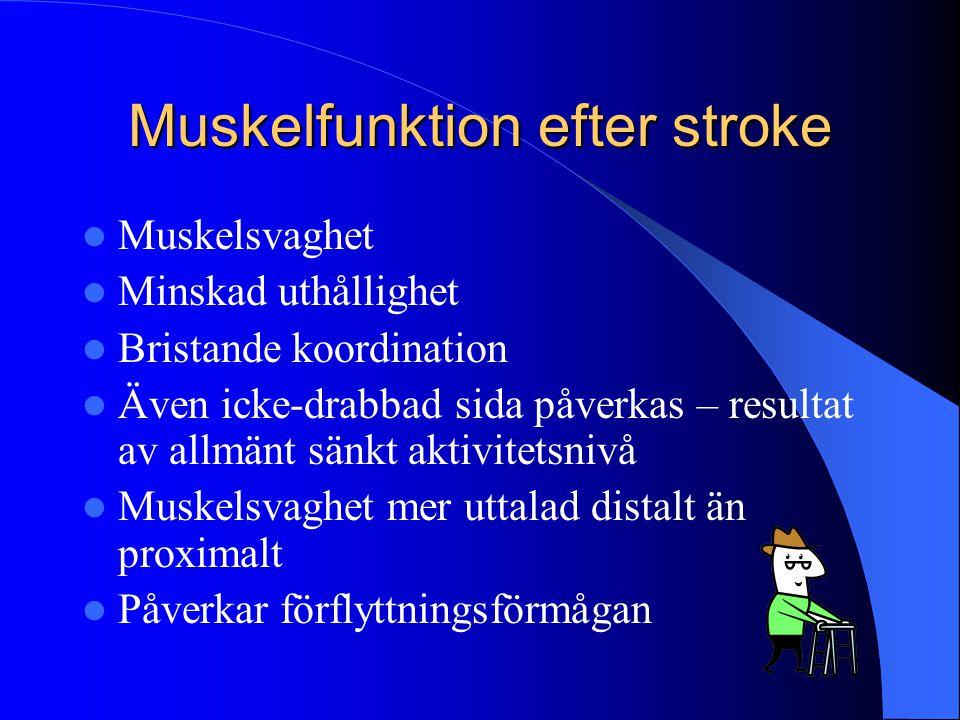 Muskelfunktion efter stroke