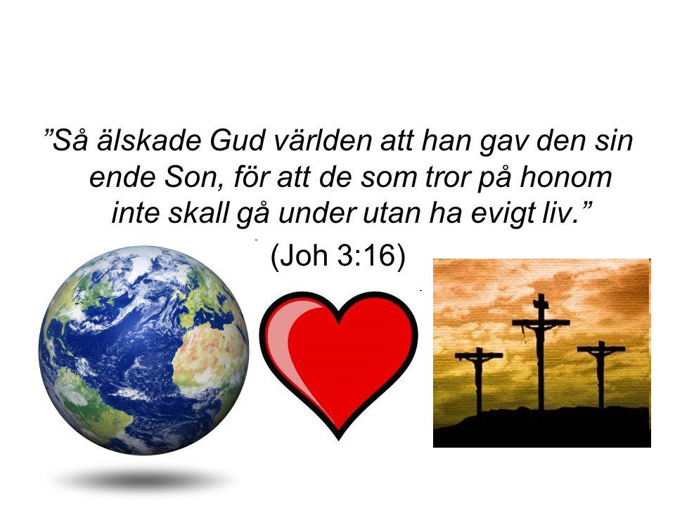 Så älskade Gud världen att han gav den sin ende Son, för att de som tror på honom inte skall gå under utan ha evigt liv.
