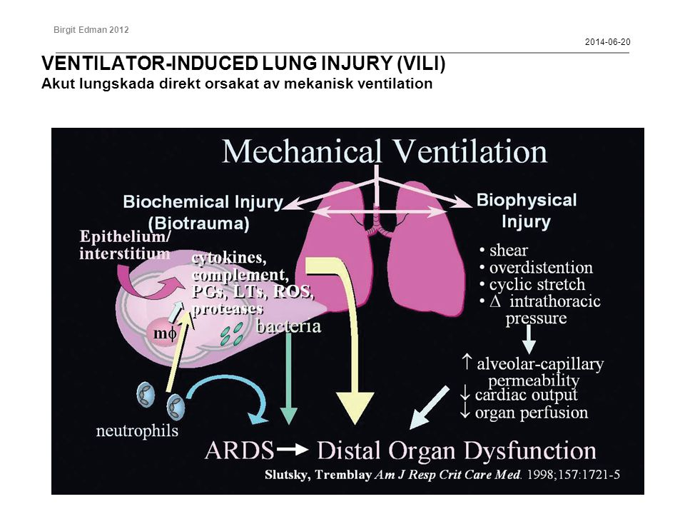 2017-04-02 VENTILATOR-INDUCED LUNG INJURY (VILI) Akut lungskada direkt orsakat av mekanisk ventilation.