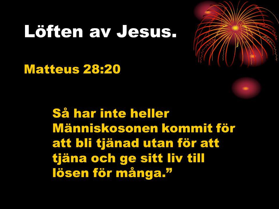 Löften av Jesus. Matteus 28:20