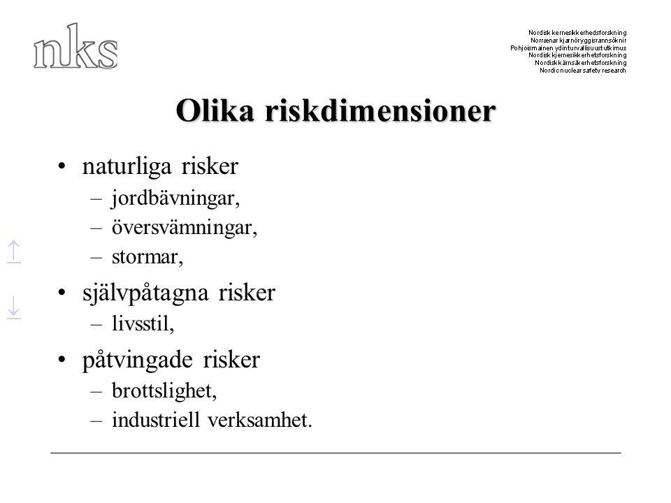 Olika riskdimensioner