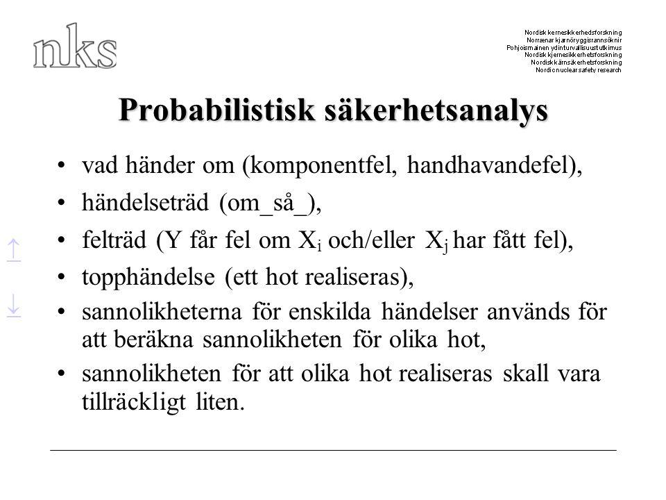 Probabilistisk säkerhetsanalys