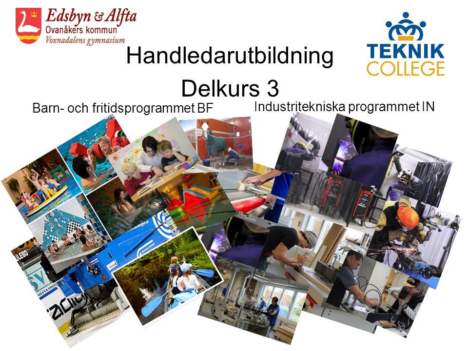 Handledarutbildning Delkurs 3 Barn- och fritidsprogrammet BF