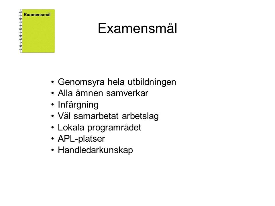 Examensmål Genomsyra hela utbildningen Alla ämnen samverkar Infärgning