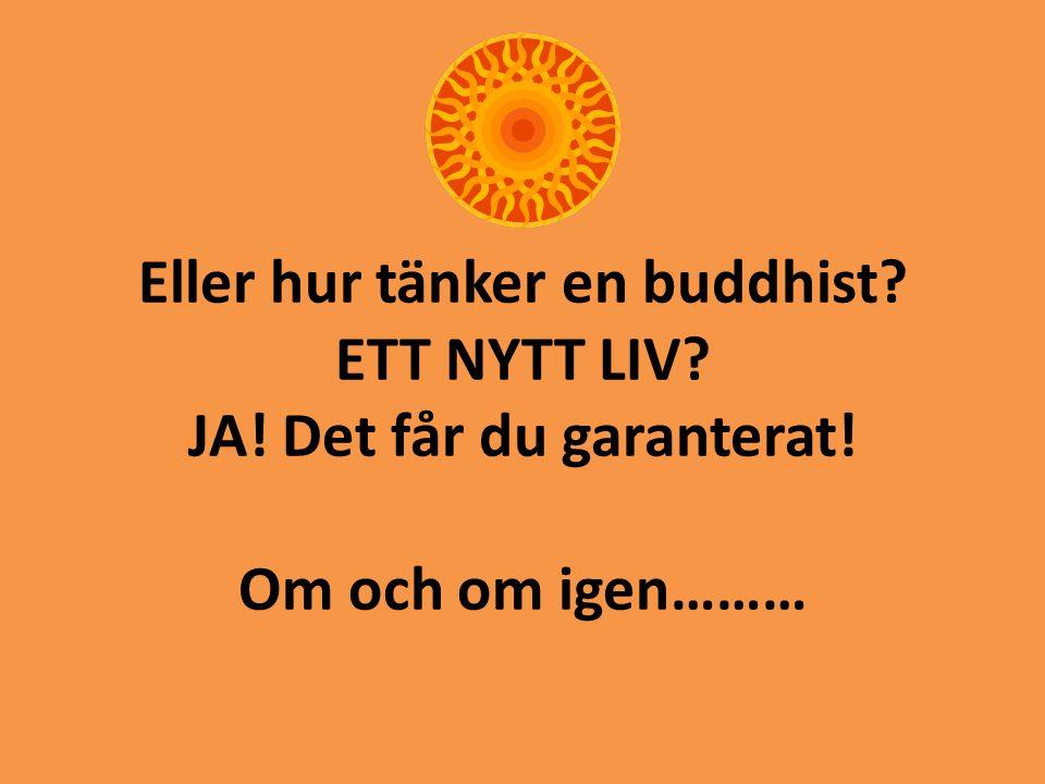 Eller hur tänker en buddhist. ETT NYTT LIV. JA. Det får du garanterat