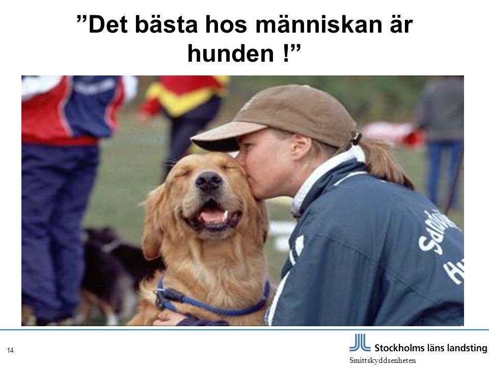 Det bästa hos människan är hunden !