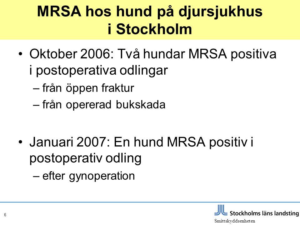 MRSA hos hund på djursjukhus i Stockholm