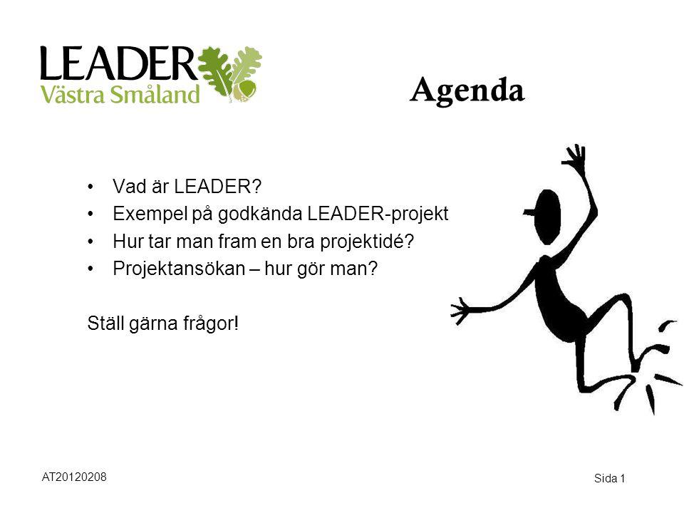Agenda Vad är LEADER Exempel på godkända LEADER-projekt
