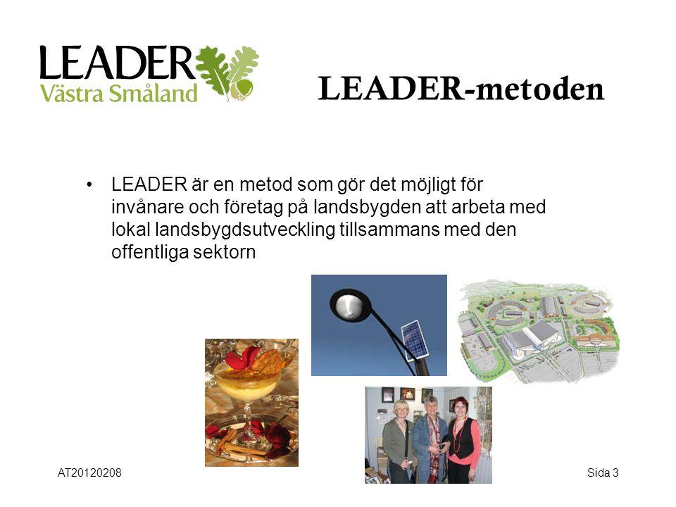 LEADER-metoden