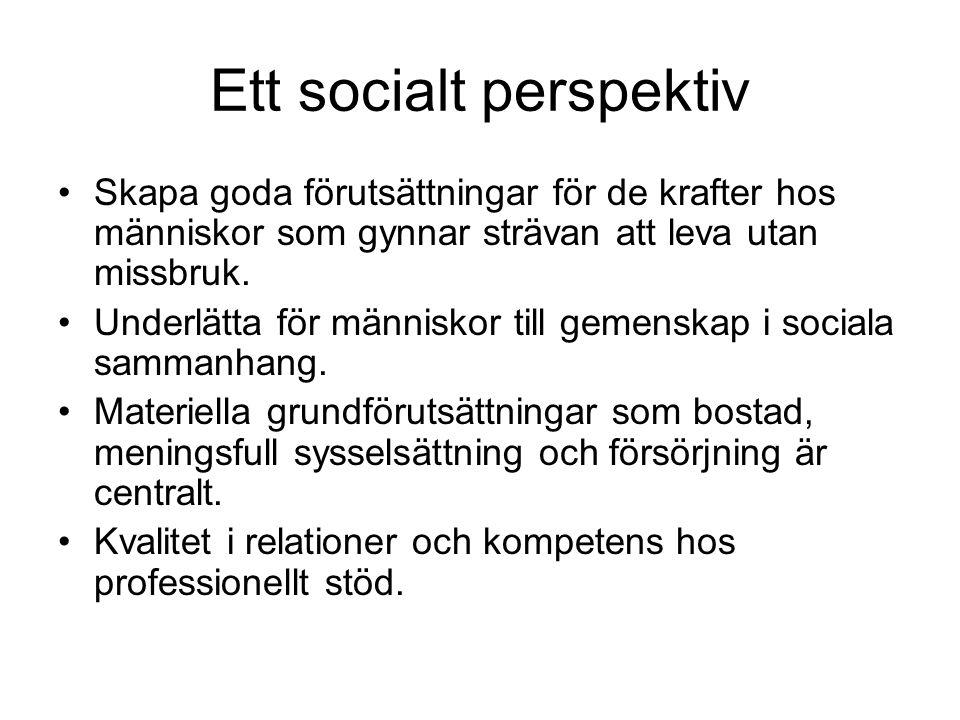 Ett socialt perspektiv