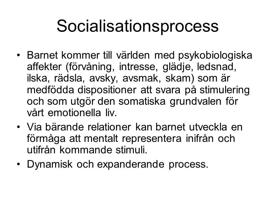 Socialisationsprocess