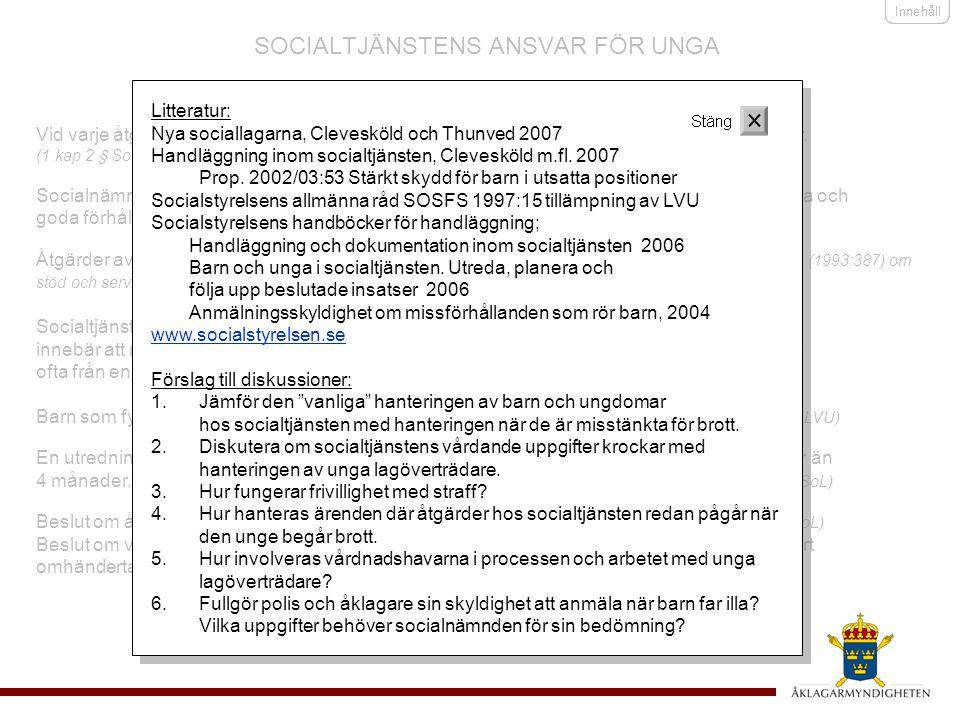 SOCIALTJÄNSTENS ANSVAR FÖR UNGA