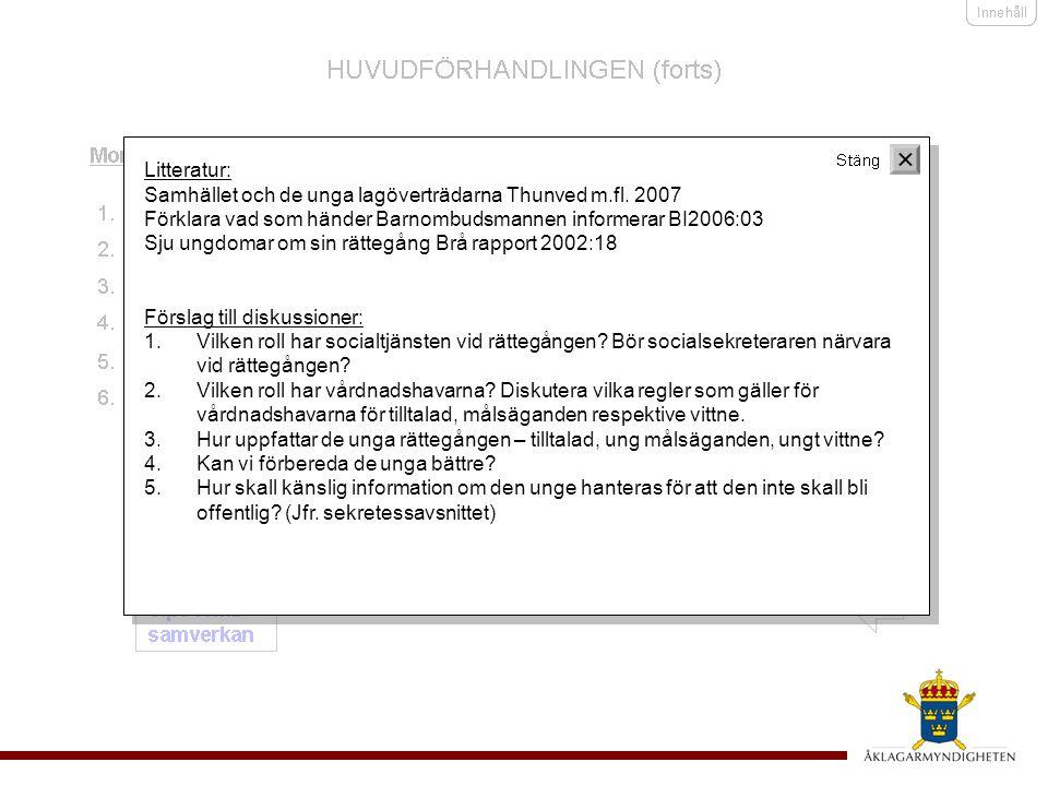 Samhället och de unga lagöverträdarna Thunved m.fl. 2007