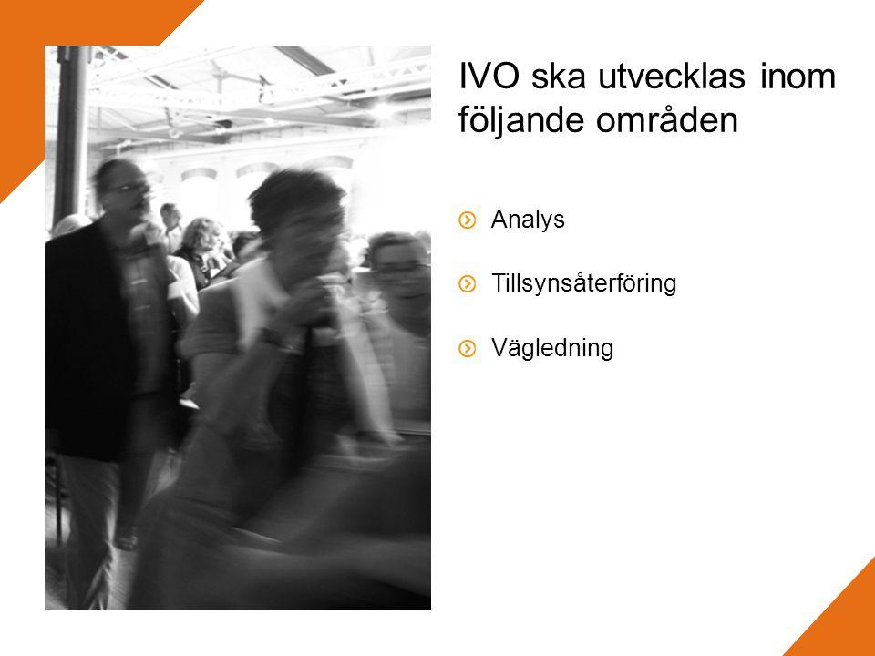 IVO ska utvecklas inom följande områden