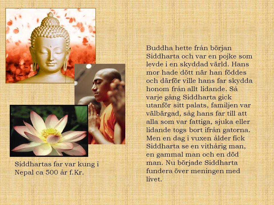 Buddha hette från början Siddharta och var en pojke som levde i en skyddad värld. Hans mor hade dött när han föddes och därför ville hans far skydda honom från allt lidande. Så varje gång Siddharta gick utanför sitt palats, familjen var välbärgad, såg hans far till att alla som var fattiga, sjuka eller lidande togs bort ifrån gatorna. Men en dag i vuxen ålder fick Siddharta se en vithårig man, en gammal man och en död man. Nu började Siddharta fundera över meningen med livet.