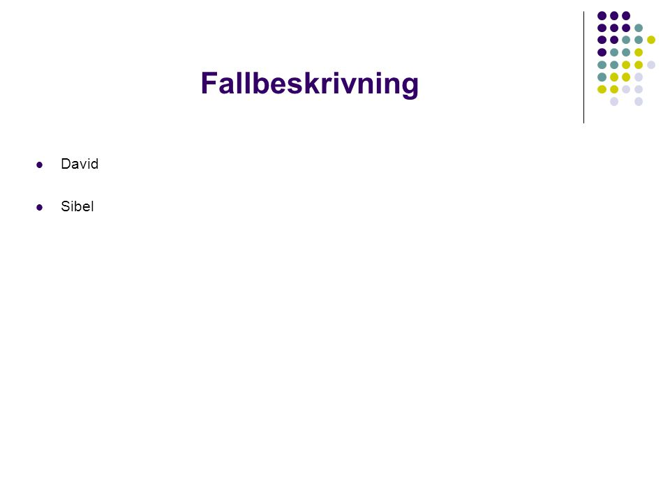 Fallbeskrivning David Sibel