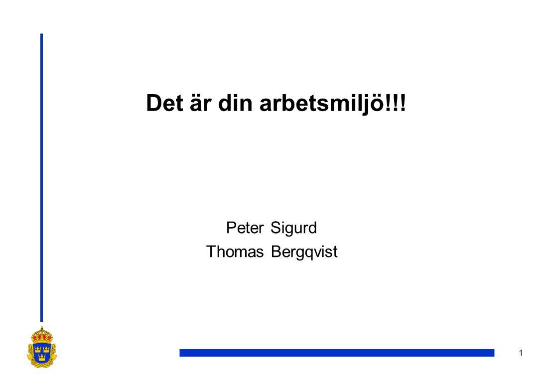 Peter Sigurd Thomas Bergqvist