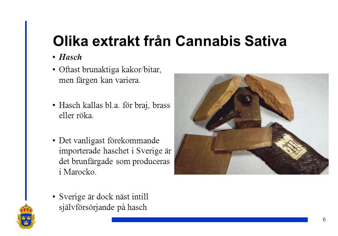 Olika extrakt från Cannabis Sativa