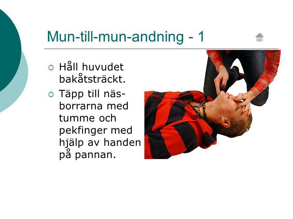 Mun-till-mun-andning - 1