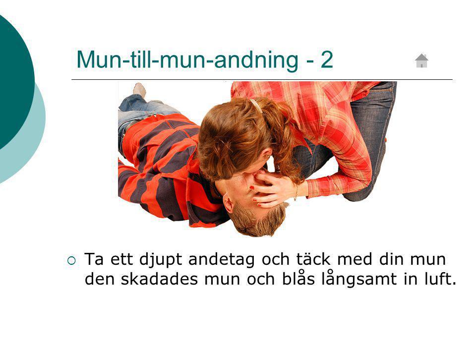 Mun-till-mun-andning - 2