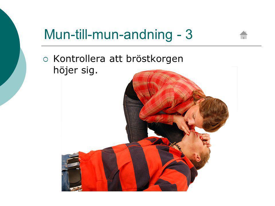 Mun-till-mun-andning - 3