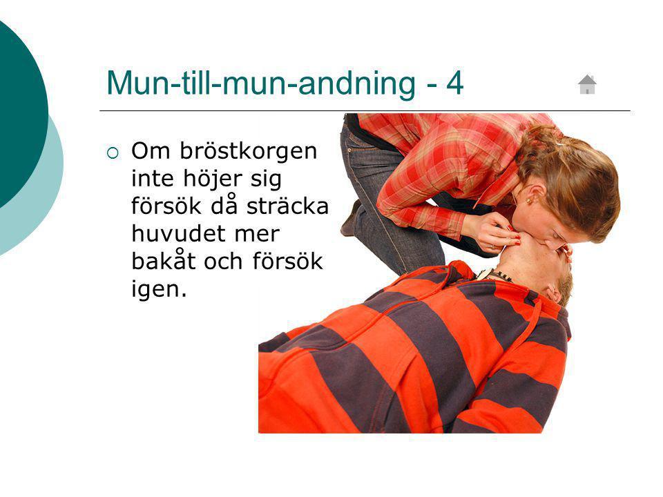 Mun-till-mun-andning - 4