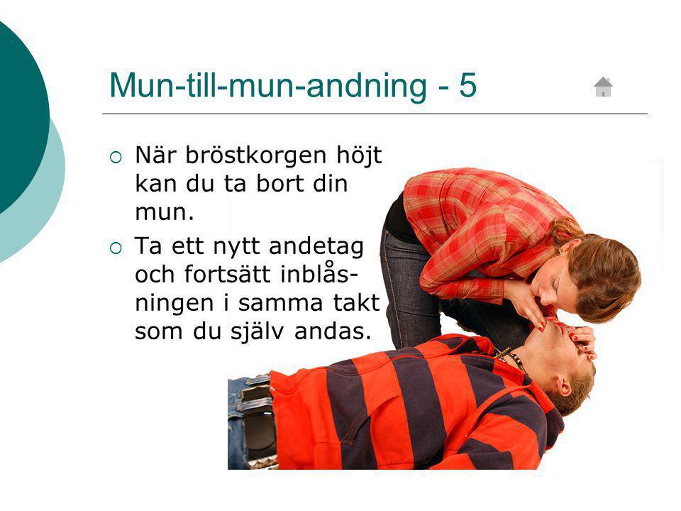 Mun-till-mun-andning - 5