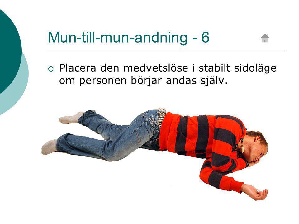 Mun-till-mun-andning - 6