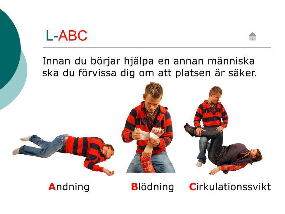 L-ABC Innan du börjar hjälpa en annan människa ska du förvissa dig om att platsen är säker.