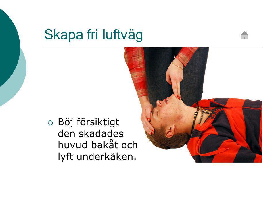 Skapa fri luftväg Böj försiktigt den skadades huvud bakåt och lyft underkäken.