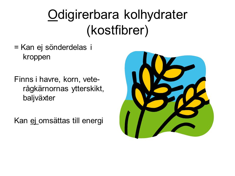 Odigirerbara kolhydrater (kostfibrer)