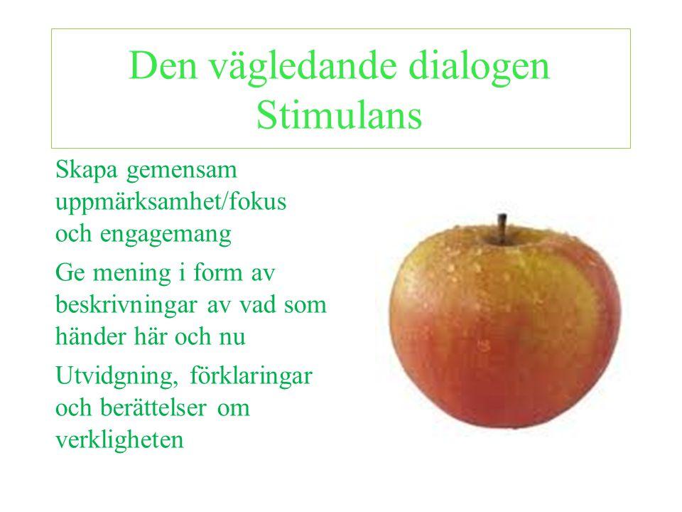 Den vägledande dialogen Stimulans