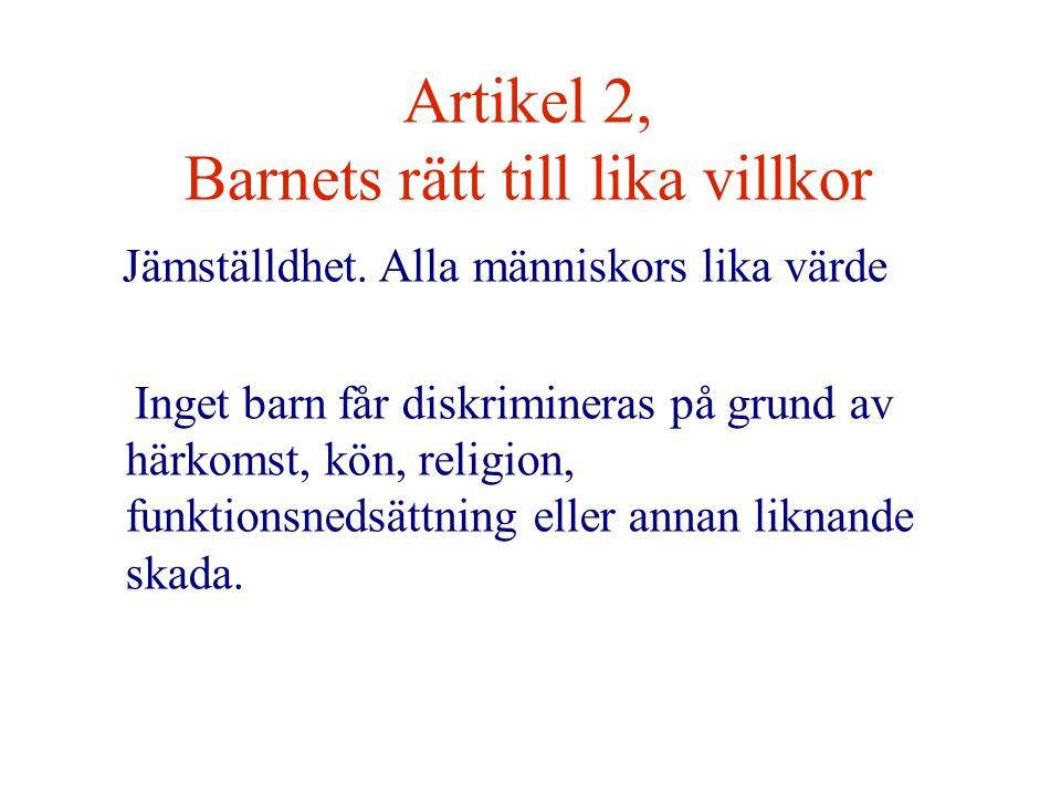 Artikel 2, Barnets rätt till lika villkor