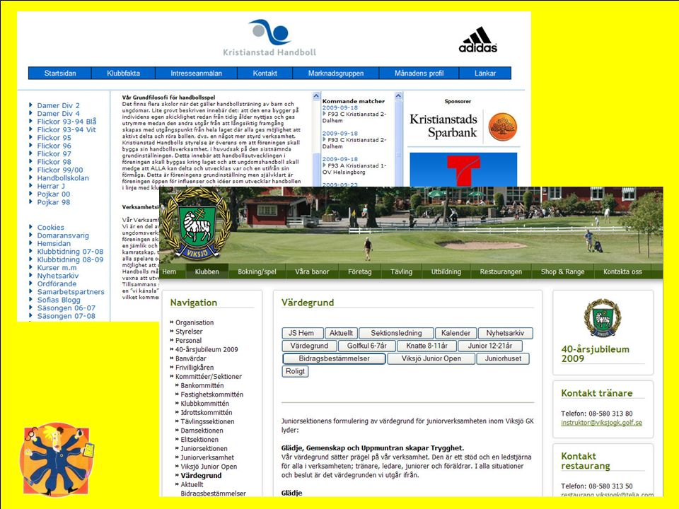 Hur ser föreningens hemsida ut. Beskriver ni tydligt vad ni står för
