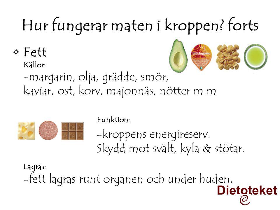 Hur fungerar maten i kroppen forts