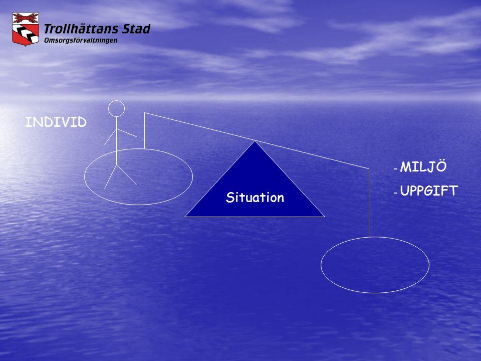 INDIVID Situation - MILJÖ - UPPGIFT