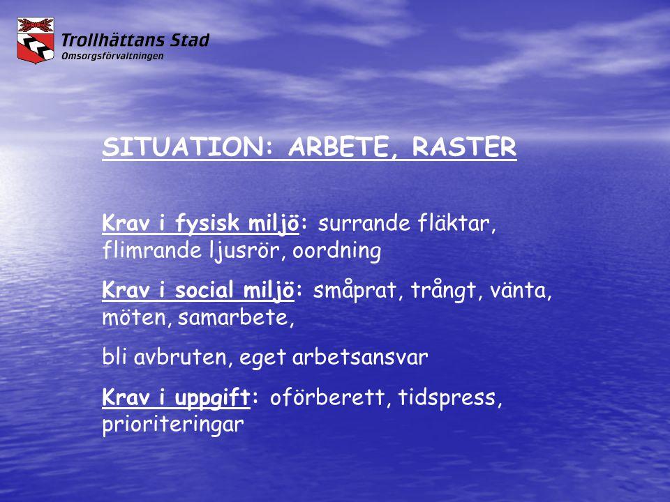 SITUATION: ARBETE, RASTER