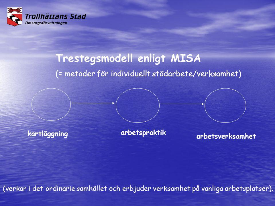 Trestegsmodell enligt MISA