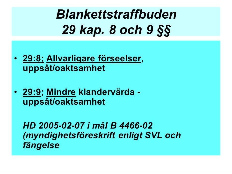 Blankettstraffbuden 29 kap. 8 och 9 §§